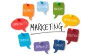 Định hướng phát triển website thương mại trong Marketing online